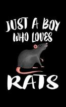 Just A Boy Who Loves Rats
