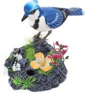 Toi-toys Fluitende En Bewegende Vogel