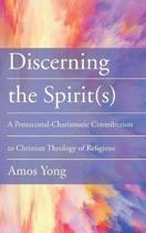 Discerning the Spirit(s)
