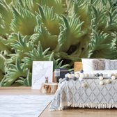 Fotobehang Green Organic Texture | VEL - 152.5cm x 104cm | 130gr/m2 Vlies