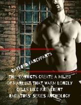 The 'Convicts Create a Milieu of Manlust That Warm Lonely Cells Like Irreverent Radiators' Series Anthology
