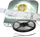 LEDstrip KOUD WIT 5-meter 60 leds/meter waterproof LED strip
