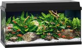 Juwel Primo 110 Aquarium - Zwart - 110L - 81 x 36 x 45 cm