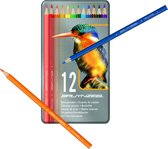Kleurblik 12 kleurpotloden IJsvogel