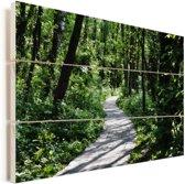 Pad in de dichtbegroeide bossen van het Nationaal park Stenshuvud in Zweden Vurenhout met planken 30x20 cm - klein - Foto print op Hout (Wanddecoratie)