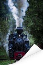 Een stoomlocomotief in de groene bossen Poster 20x30 cm - klein - Foto print op Poster (wanddecoratie woonkamer / slaapkamer)