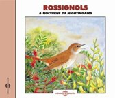 Nightingales / Rossignols