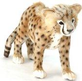 Pluche Cheetah lopend, Hansa