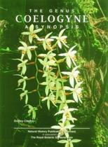 Genus Coelogyne, The