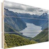 South Fiord in Nationaal park Fiordland in Nieuw-Zeeland Vurenhout met planken 90x60 cm - Foto print op Hout (Wanddecoratie)