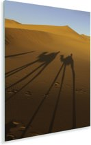 Kamelen schaduwen op de Afrikaanse zandduinen van Erg Chebbi Plexiglas 60x90 cm - Foto print op Glas (Plexiglas wanddecoratie)