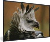 Foto in lijst - Portret van de harpijarend fotolijst zwart 60x40 cm - Poster in lijst (Wanddecoratie woonkamer / slaapkamer)