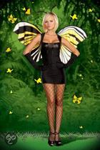Vlinder medium