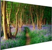 Een bos met gekleurde bloemen Aluminium 90x60 cm - Foto print op Aluminium (metaal wanddecoratie)