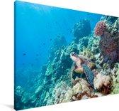 Groene zeeschildpad in Groot Barrièrerif Canvas 180x120 cm - Foto print op Canvas schilderij (Wanddecoratie woonkamer / slaapkamer) XXL / Groot formaat!