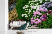 Fotobehang vinyl - Levendige hortensia bloemen breedte 600 cm x hoogte 400 cm - Foto print op behang (in 7 formaten beschikbaar)