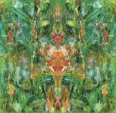Emerald Aether: Shape Shifting...