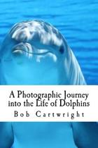 A Photographic Journey Into the Life of Dolphins