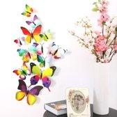 3D vlinders | regenboog