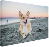 Hond op het strand Canvas 120x80 cm - Foto print op Canvas schilderij (Wanddecoratie woonkamer / slaapkamer) / Dieren Canvas Schilderijen