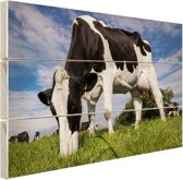 FotoCadeau.nl - Close-up van grazende koe Hout 60x40 cm - Foto print op Hout (Wanddecoratie)
