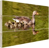 Ganzen in het water Hout 120x80 cm - Foto print op Hout (Wanddecoratie)