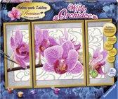 Ravensburger Schilderen Op Nummer - Orchidee 3 luik