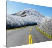 Landschap van bevroren bergen langs de Blue Ridge Parkway in Amerika Canvas 180x120 cm - Foto print op Canvas schilderij (Wanddecoratie woonkamer / slaapkamer) XXL / Groot formaat!