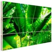Tropische bladeren in jungle  Hout 80x60 cm - Foto print op Hout (Wanddecoratie)