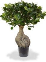 Panda kunst bonsai 55 cm