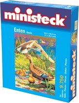 Ministeck: Eenden