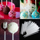 100X Papieren Cakepop Stokjes Set - Pop Cake Lolly Stokjes/ Lollipop Sticks - 10cm AA Commerce