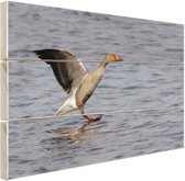 Grijze gans in het water Hout 30x20 cm - klein - Foto print op Hout (Wanddecoratie)
