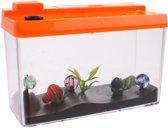 aquarium met groeiende vissen oranje 10 x 6 x 5 cm