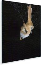 Beeld van een baardman met een donkere achtergrond Plexiglas 120x180 cm - Foto print op Glas (Plexiglas wanddecoratie) XXL / Groot formaat!