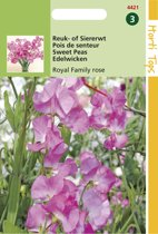 Hortitops Zaden - Lathyrus Odoratus Royal Family Rose