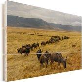 Kudde wilde dieren in de krater van Ngorongoro in Tanzania Vurenhout met planken 90x60 cm - Foto print op Hout (Wanddecoratie)