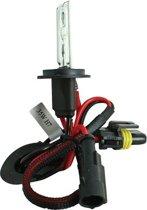 Evo Formance Xenonlamp H7 12 Volt 35 Watt 6500k Wit Per Stuk