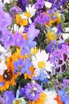 Floral Journal Pretty Colors