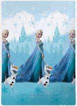 Disney Frozen Castle - Beddensprei - Eenpersoons - 140 x 200 cm - Blauw