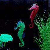 Lichtgevende zeepaard glow in the dark voor in het aquarium. Groen