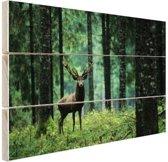 Edelhert in het bos Hout 60x40 cm - Foto print op Hout (Wanddecoratie)