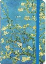 Agenda almond blossom 2019-2020 - 16 maanden