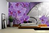 Fotobehang Papier Bloemen, Orchidee   Paars, Grijs   368x254cm