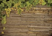 Fotobehang Wooden Wall Grapes | XXXL - 416cm x 254cm | 130g/m2 Vlies