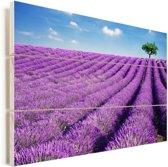 Rollende heuvels met lavendel Vurenhout met planken 120x80 cm - Foto print op Hout (Wanddecoratie)