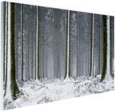 Besneeuwde bomen in de winter Glas 30x20 cm - Foto print op Glas (Plexiglas wanddecoratie)