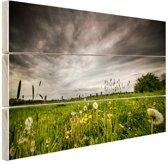 Weide voor een storm Hout 160x120 cm - Foto print op Hout (Wanddecoratie) XXL / Groot formaat!