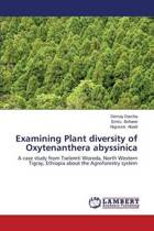 Examining Plant Diversity of Oxytenanthera Abyssinica