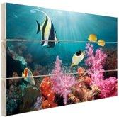 Kleurig koraal Hout 160x120 cm - Foto print op Hout (Wanddecoratie) XXL / Groot formaat!